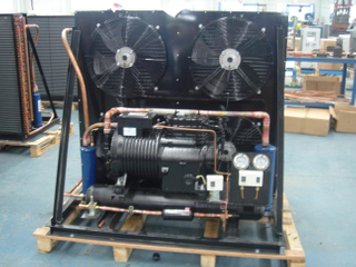 Low Temperature semi hermetic condensing unit for Cold Storage